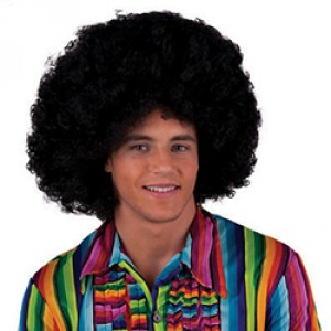 Pruik  'Flower Power' Afro